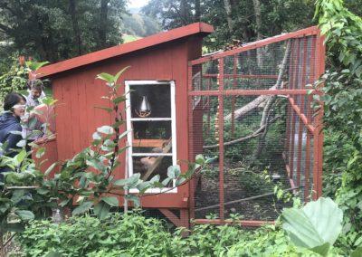 Hönshus hemma hos vår arkitekt Erik på Tjörn